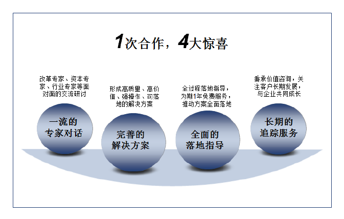 中美嘉伦双百行动改革方案.png