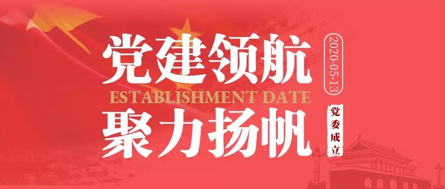 东龙集团党委成立选举大会