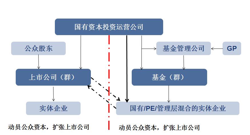 国有资本运营公司发展规划