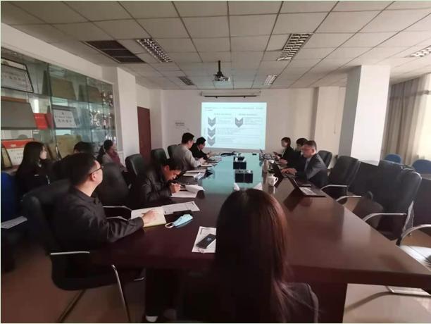 北京密云商务区开发中心公司改革咨询项目