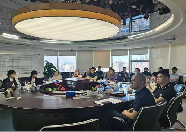 深圳能源财务公司战略规划项目